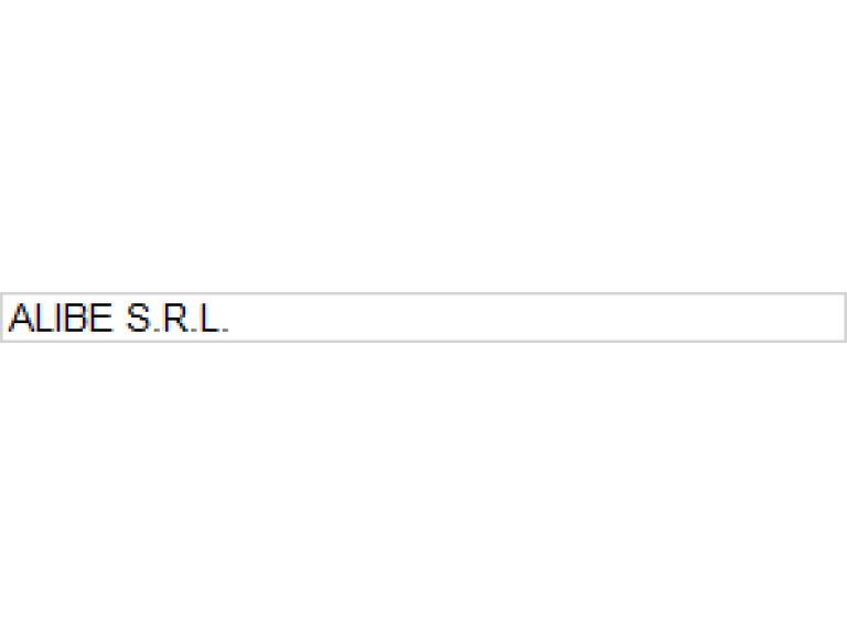 ALIBE S.R.L.